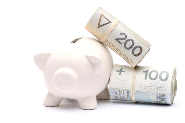 Doradca Finansowy Stronie Śląskie